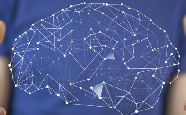 Neurociencia y Neuropsicología educativa. Presencial / Aula Virtual